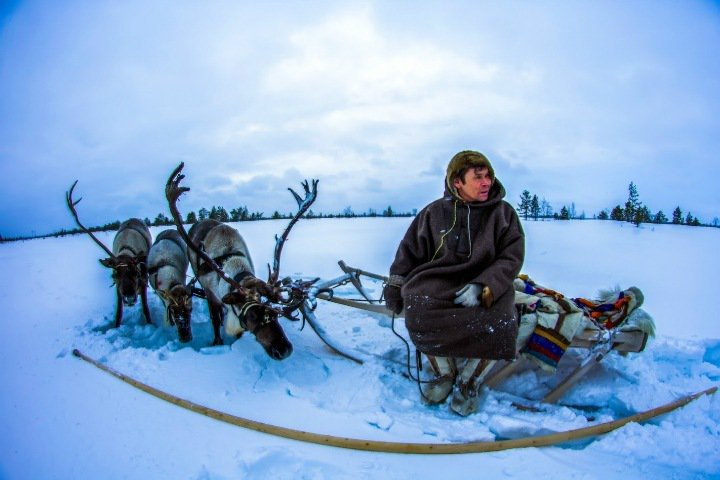 How one gene mutation helped indigenous peoples of Siberia adapt to harsh conditions