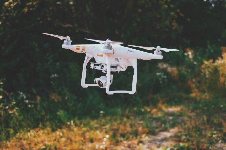Drones will save crop from vole mice
